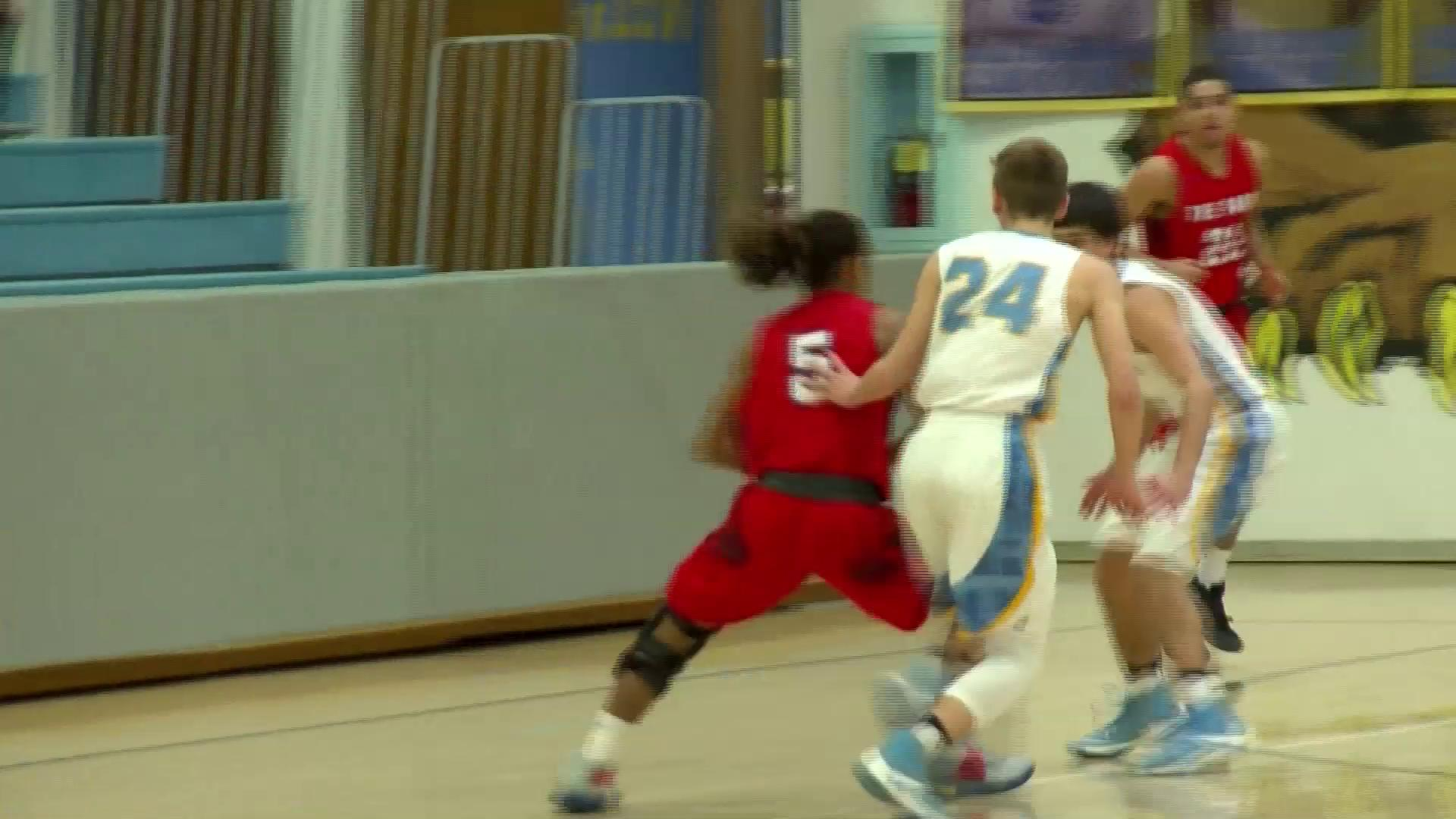 2.17.17 Video- Wheeling Park vs. Oak Glen- high school boys basketball